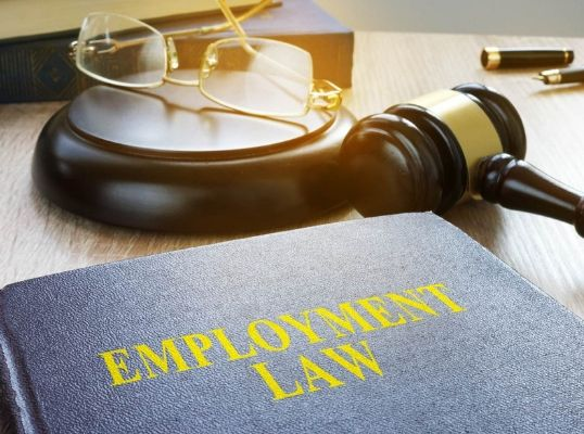 Employment (Miscellaneous Provisions) Act, 2018